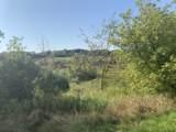 Lt40 Ridge Creek Rd - Photo 3
