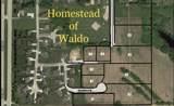 Lot C-2 Homestead Of Waldo - Photo 1