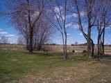 5414 Two Creeks Rd - Photo 3