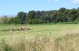 Lt8 Meadow View Estates - Photo 1