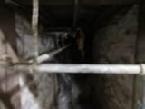 10442 Wauwatosa Rd - Photo 24