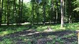 4771 Rolling Hills Dr - Photo 4