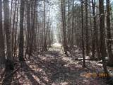 40 Acres Cty Rd 346 - Photo 3