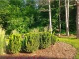 3414 Turnberry Oak Dr - Photo 49