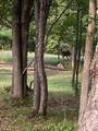 N11820 Whispering Pine Ln - Photo 36