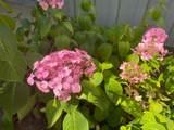 8415 Sunnyvale Rd - Photo 29