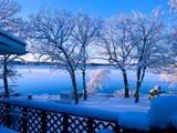 29145 White Oak Ln - Photo 2