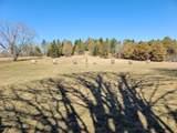 1730 Green Tree Rd - Photo 29