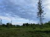 6.25 Ac Big Woods Lane - Photo 3