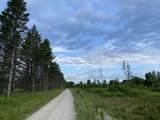 6.25 Ac Big Woods Lane - Photo 4