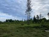6.25 Ac Big Woods Lane - Photo 5