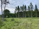 6.25 Ac Big Woods Lane - Photo 6