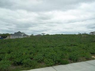 N73W23607 Craven Dr, Sussex, WI 53089 (#1530614) :: Vesta Real Estate Advisors LLC