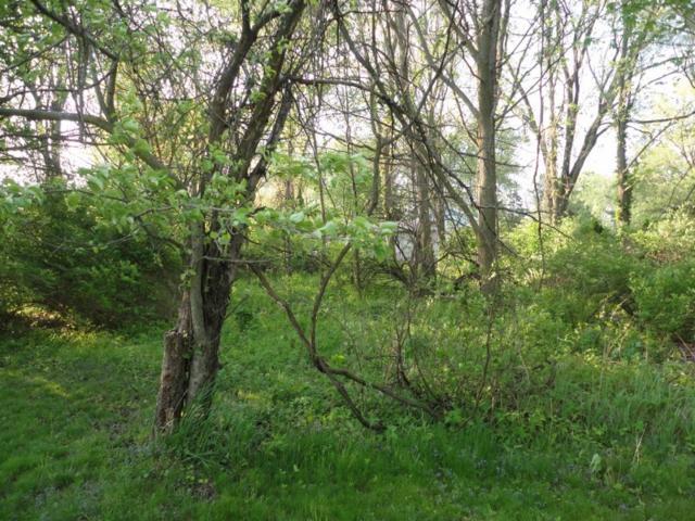 Lt1 Cypress Dr, Geneva, WI 53147 (#1529722) :: Tom Didier Real Estate Team