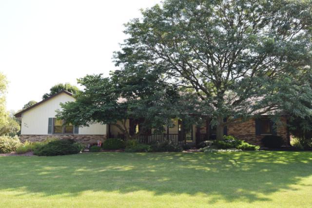 W164N8138 Tamarack Trl, Menomonee Falls, WI 53051 (#1546211) :: Tom Didier Real Estate Team