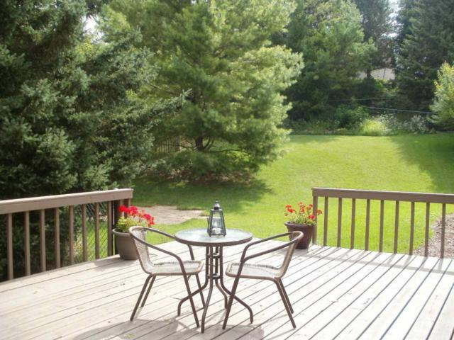 910 Manchester Ct, Hartland, WI 53029 (#1546482) :: Tom Didier Real Estate Team