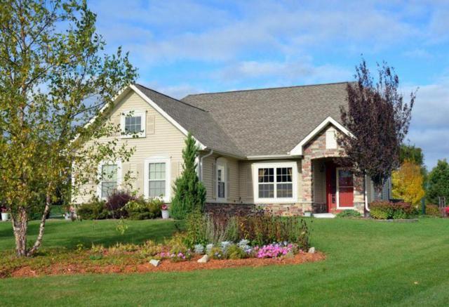 8187 S Shadwell Cir, Franklin, WI 53132 (#1555959) :: Tom Didier Real Estate Team
