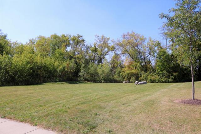 Lt35 Green Crane Dr, Menomonee Falls, WI 53051 (#1563810) :: Vesta Real Estate Advisors LLC