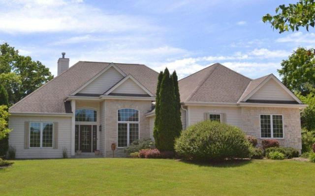 100 Muir Valley Rd, Delafield, WI 53018 (#1582843) :: Vesta Real Estate Advisors LLC