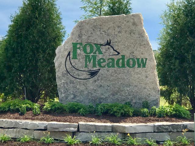 W157N6754 Tamarack Trl, Menomonee Falls, WI 53051 (#1606680) :: Vesta Real Estate Advisors LLC