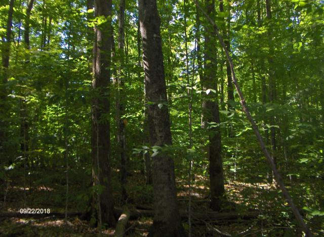 9.96 Acres Whiskers Ln, Silver Cliff, WI 54104 (#1606805) :: Tom Didier Real Estate Team