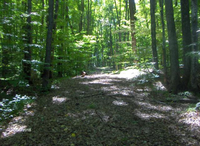 16.5 Acres Whiskers Ln, Silver Cliff, WI 54104 (#1606812) :: Tom Didier Real Estate Team