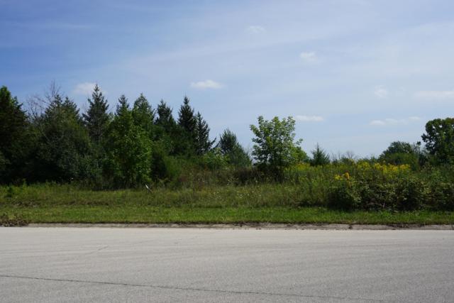 3001 Oakcrest Dr Lt16, Dover, WI 53139 (#1606856) :: Tom Didier Real Estate Team