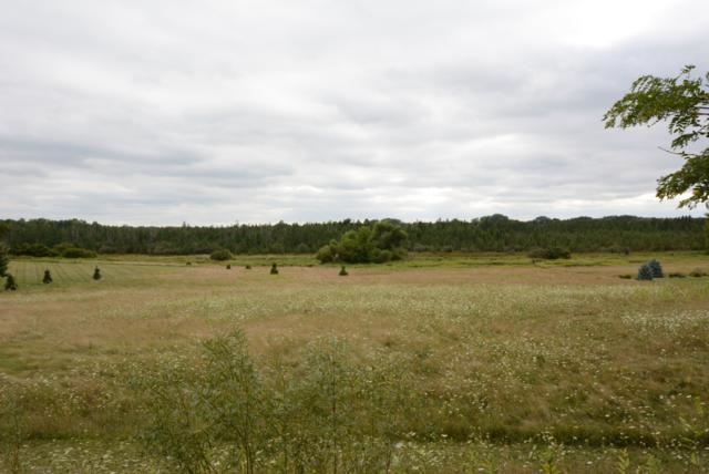 Lt6 Mcmahon Rd, Oconomowoc, WI 53066 (#1608170) :: Tom Didier Real Estate Team