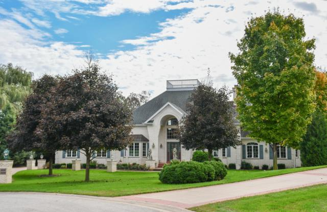 W289N4756 Wild Rose Ct, Delafield, WI 53029 (#1609255) :: RE/MAX Service First