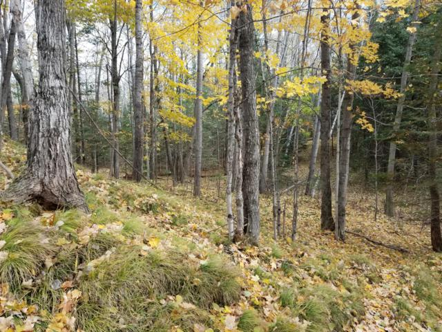 60.8 Acres Cty N Rd, Aurora, WI 54151 (#1611697) :: RE/MAX Service First Service First Pros