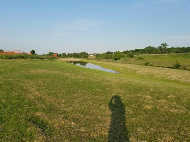 27239 Dover View Ln Lt9, Dover, WI 53185 (#1611910) :: Tom Didier Real Estate Team