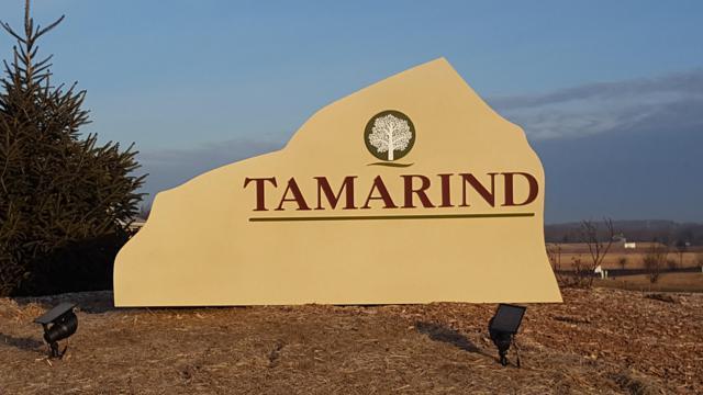 Lt20 Tamarind Way, Menomonee Falls, WI 53051 (#1618970) :: eXp Realty LLC