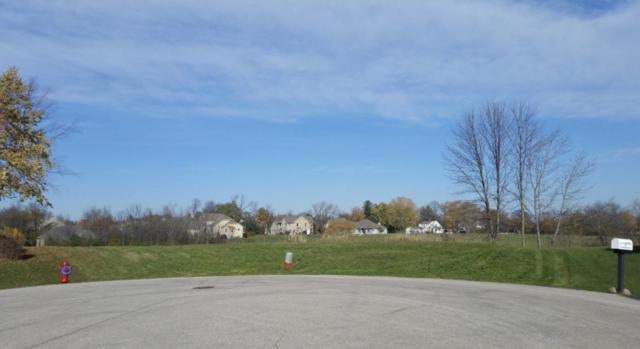 10900 W Meadowcreek Ct, Milwaukee, WI 53224 (#1622373) :: Tom Didier Real Estate Team