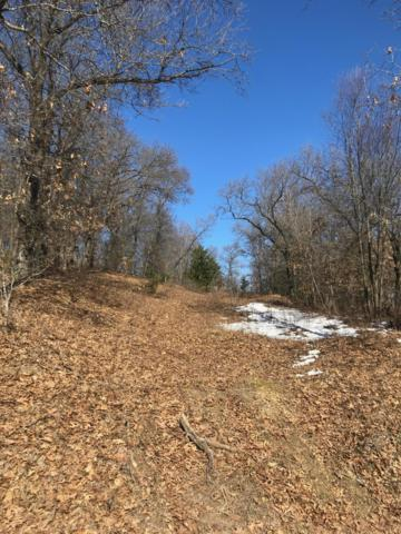 Lot 19 Idylic Rd, Leon, WI 54656 (#1627766) :: RE/MAX Service First Service First Pros