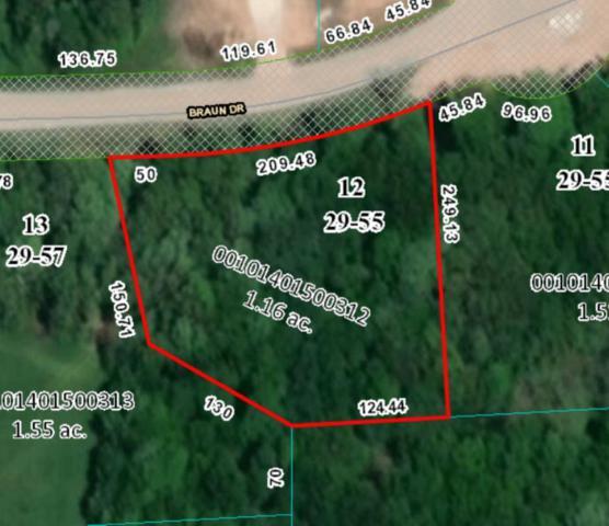 Lot 12 Braun Drive, Cato, WI 54230 (#1630956) :: Tom Didier Real Estate Team