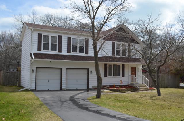8713 3rd Ave, Pleasant Prairie, WI 53158 (#1631649) :: Tom Didier Real Estate Team