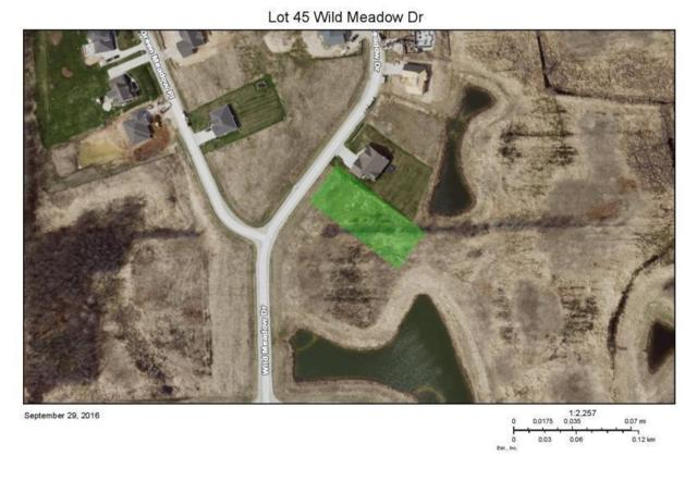 Lt45 Wild Meadow Dr, Sheboygan, WI 53083 (#1636680) :: Tom Didier Real Estate Team