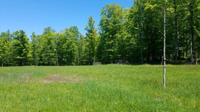 322 Acres W Townline Rd, Lake, WI 54159 (#1644227) :: eXp Realty LLC