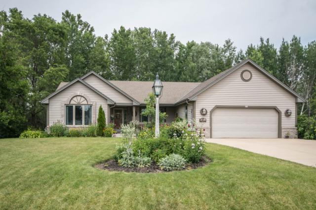 418 E Red Pine Cir, Dousman, WI 53118 (#1647178) :: RE/MAX Service First Service First Pros