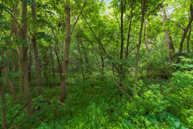 Lt7 Indian Hills Lt8, Fontana, WI 53125 (#1648087) :: Tom Didier Real Estate Team