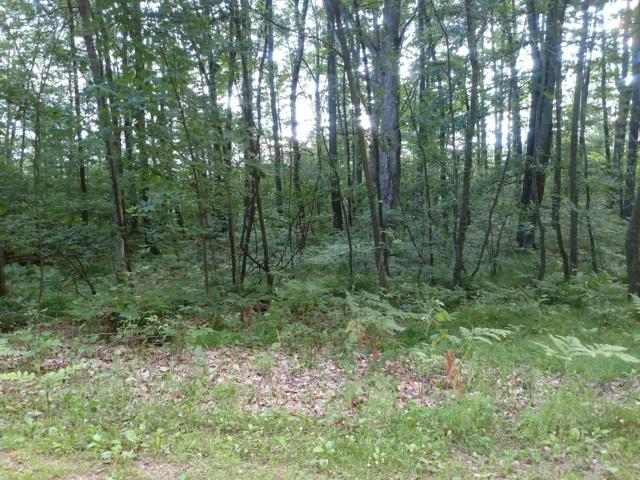 Lot 13 43rd Rd, Pound, WI 54161 (#1649435) :: RE/MAX Service First Service First Pros