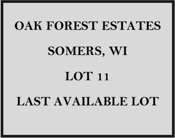Lt 11 41st Ave, Somers, WI 53144 (#1650849) :: Keller Williams