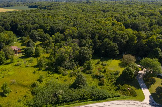136 Acre Lake View Dr, Rhine, WI 53020 (#1653759) :: RE/MAX Service First