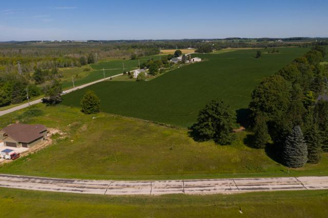 0.907 Acre Marsh View Dr, Rhine, WI 53020 (#1653760) :: OneTrust Real Estate