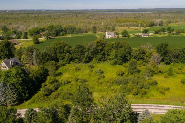 15 Acre Cedar View Dr, Rhine, WI 53020 (#1653804) :: OneTrust Real Estate