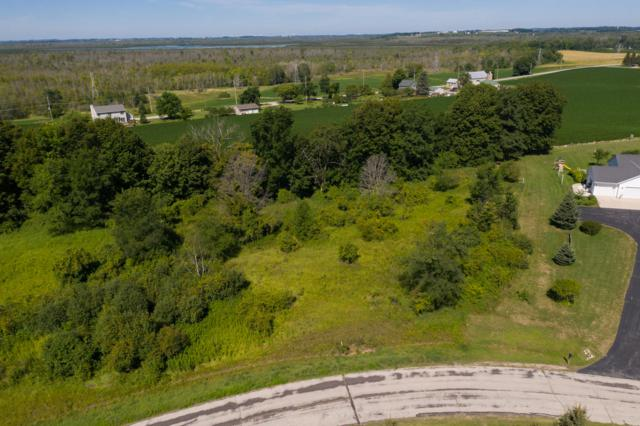 117 Acre Cedar View Dr, Rhine, WI 53020 (#1653811) :: RE/MAX Service First Service First Pros