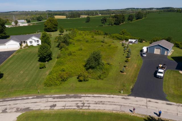 0.934 Acre Cedar View Dr, Rhine, WI 53020 (#1653818) :: RE/MAX Service First