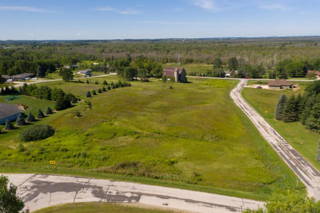 0.995 Acre Marsh View Dr, Rhine, WI 53020 (#1653825) :: RE/MAX Service First