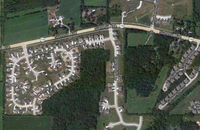 Lt90 Oak Valley Ln, Waukesha, WI 53188 (#1653874) :: Tom Didier Real Estate Team