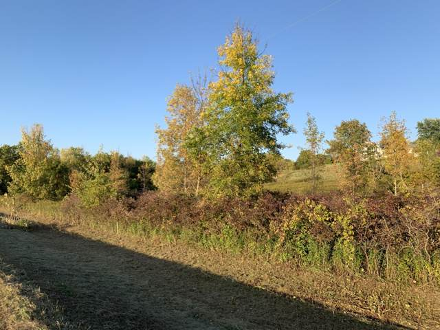 Lt3 County Road U, Greenbush, WI 53023 (#1662136) :: RE/MAX Service First